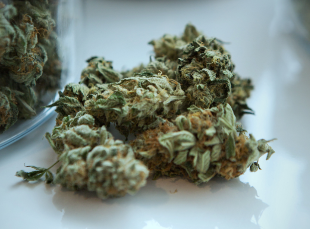 7 Conditions that Medical Marijuana can Help