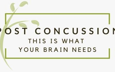 What Your Brain Needs Following a Concussion to Support Healing