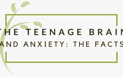 Your Teenager's Anxiety & Their Gut Health