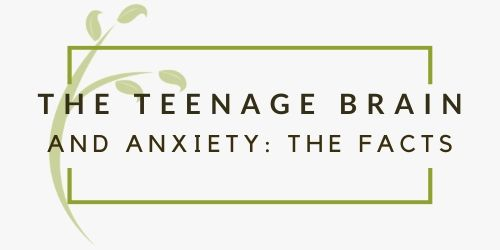 Teenage Brain and Gut Health