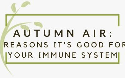 3 Reasons Autumn Air Is Good For Your Immune System
